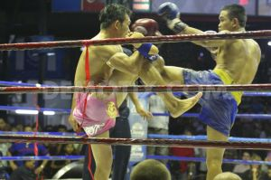 1391807670-an-era-ends-for-legendary-lumpinee-muay-thai-boxing-stadium-in-bangkok_3869533